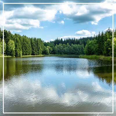 detail-life-clean-lake