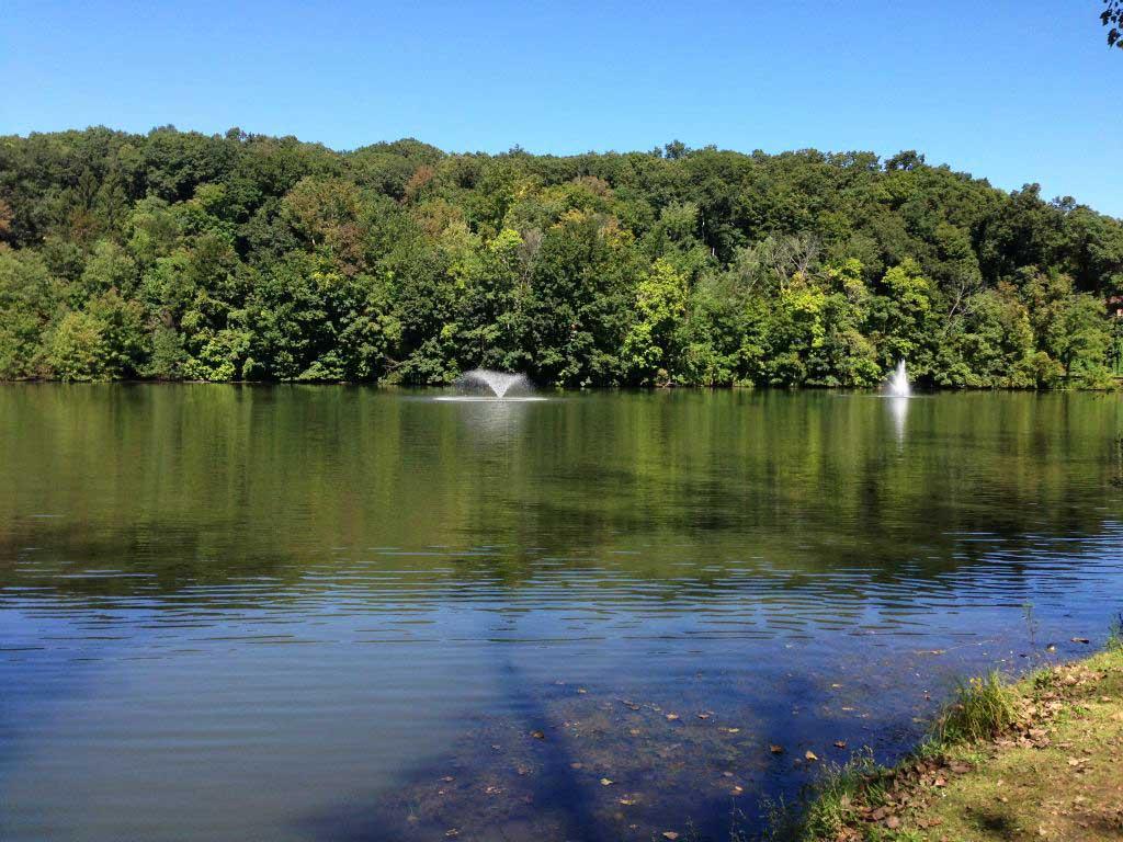 Life Inc Lake and Pond Management Hudson Valley Pond Restoration