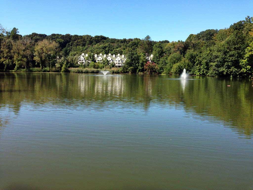 Life Inc Ponds Hudson Valley Pond Restoration